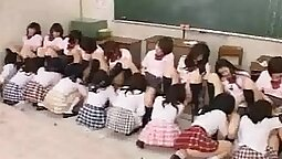 Collared orgy in the classroom