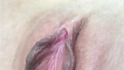 Creamy pussy tasting- starring red lips