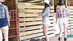 Bootyful babe takes on a cock and gets her hole destroyed by a strong dude